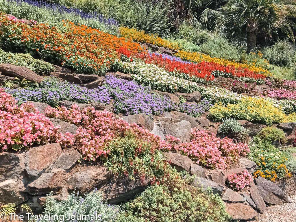 Botanical Garden in Villa Carlotta ,Jardin Botanico en Villa Carlotta